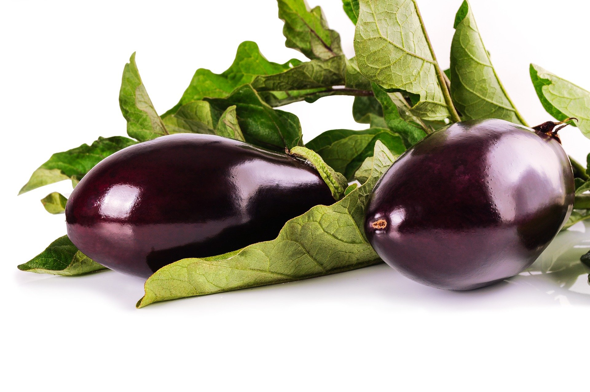 cure extrait d'aubergine